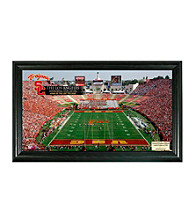 University of Southern California Stadium Gridiron Photo by Highland Mint