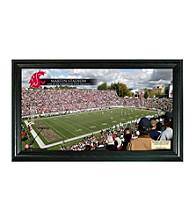 Washington State University Stadium Gridiron Pano by Highland Mint