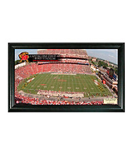 University of Maryland Stadium Gridiron Pano by Highland Mint