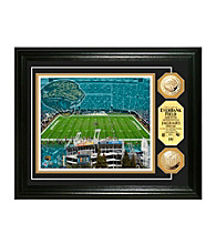 EverBank Field Gold Coin Photomint by Highland Mint