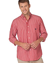 Chaps® Men's Big & Tall Fourrager Stripe Buttondown Shirt