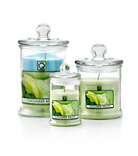 LivingQuarters 18-oz. Cucumber Melon Jar Candle