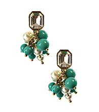 Anne Klein® Goldtone Turquoise Clip Earrings