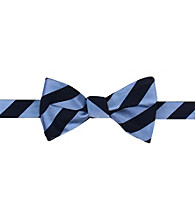 Kenneth Roberts Platinum® Men's Blue Bowtie