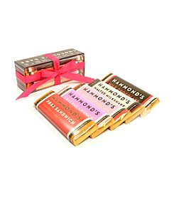 Hammond's Candies® 5 Pack Assorted Chocolate Bars