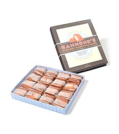 Hammond's Candies® 16-pc. Vanilla Caramel Marshmallow Gift Box