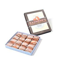 Hammond's Candies® 16-pc. Vanilla Caramel Marshmallow Gift Box