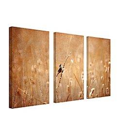 Trademark Fine Art Lois Bryan ,