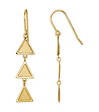 Brass Fine Silver Pltd Gold Pltd Drop Wire Earring