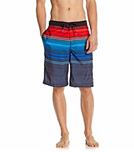 Speedo® Men's Blue Aster Horizon Ombre E-Board Shorts