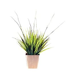Vickerman Two-Tone Grass in Brushed Silver Container