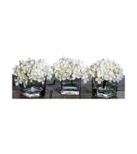 Vickerman Set of 3 White Hydrangea's in Glass Cubes with Acrylic Water