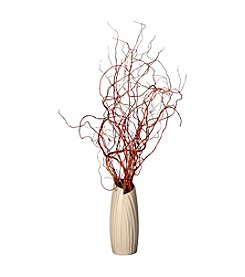 Vickerman Natural Curly Willow in 12