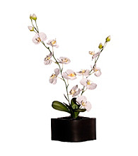 Vickerman Silk Phalaenopsis Orchids in Matte Black Ceramic Container