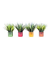 Vickerman Set of 4 Mini Grass in Assorted Colored 4