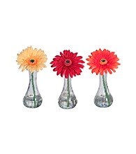 Vickerman Gerbera Daisies in Acrylic Water