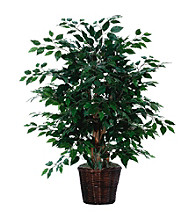 Vickerman 4' Extra Full Ficus