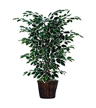 Vickerman 4' Variegated Ficus Bush in Heavy Rattan Basket