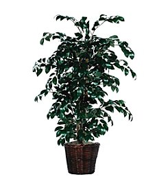 Vickerman 4' Sakaki Bush in Dark Brown Rattan Basket