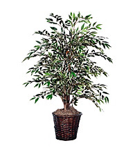 Vickerman 4' Variegated Smilax Bush