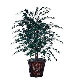 Vickerman 4' Frosted Maple