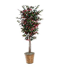Vickerman 6' Capensia in  Dark Brown Rattan