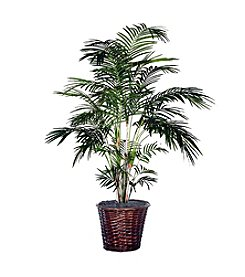 Vickerman 6' Tropical Palm