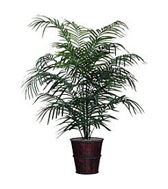 Vickerman Dwarf Palm Tree
