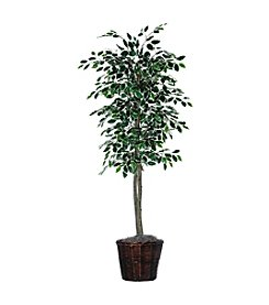 Vickerman 6' Variegated Ficus Tree in Dark Brown Rattan Basket