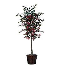 Vickerman 6' Capensia Tree in Dark Brown Rattan Basket