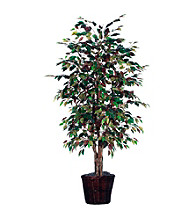 Vickerman 6' Mystic Ficus in Dark Brown Rattan Basket
