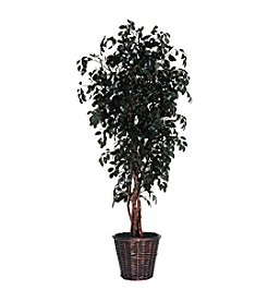 Vickerman 6' Sakaki  in Dark Brown Rattan Basket
