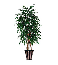 Vickerman 6' Mango Executive / Silver / Black