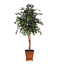 Vickerman 6' Ficus in Heartland Square Metal Container