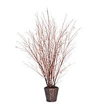 Vickerman 5' Natural Winterbirch in Rattan Basket