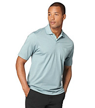 Van Heusen® Men's Green Pond Fine Line Stripe Polo