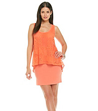 S.L. Fashions Lace Overlay Sheath Dress
