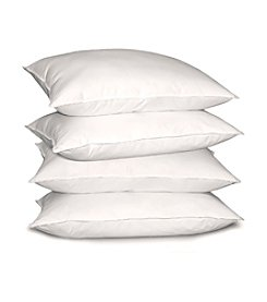 Blue Ridge Home Products Near Nature 4-pk. Hypoallergenic Down-Alternative Pillow