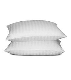 Blue Ridge Home Products Nature's Touch 2-pk. White Goose Down and Feather Pillow