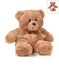 DreamTime® Spa Comforts Aromatherapy Buddy Bear