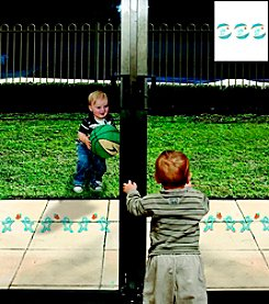 Dreambaby® Glass Door/Window Decals