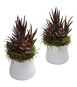Nearly Natural® Set of Two Mixed Succulent with White Planter
