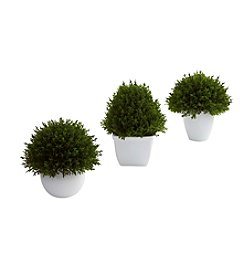 Nearly Natural® Set of Three Mixed Cedar Topiary Collection
