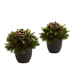Nearly Natural® Set of Two Pine and Berries with Black Planter