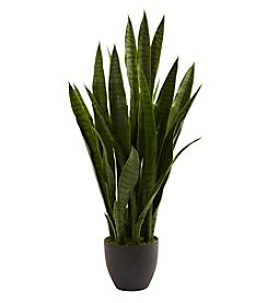 Nearly Natural® Sansevieria with Black Planter