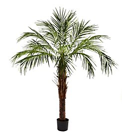 Nearly Natural® 6' Robellini Palm Tree