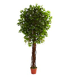 Nearly Natural® Indoor Outdoor UV Resistant Ficus Tree