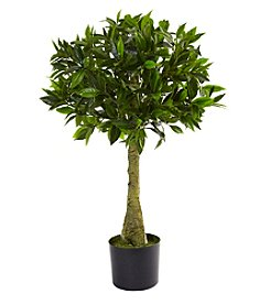 Nearly Natural® Indoor Outdoor UV Resistant 3' Bay Leaf Topiary