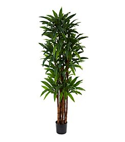 Nearly Natural® 6.5' Dracaena Tree