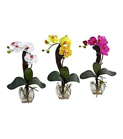 Nearly Natural® Set of Three Mini Phal Orchid Arrangement
